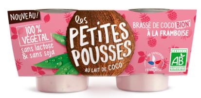 Vrai-Faux-yaourt-végétal-coco-Framboise-1024x724